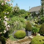 The wonderful gardens at Bullocks Horn Cottage - as featured in Magazines
