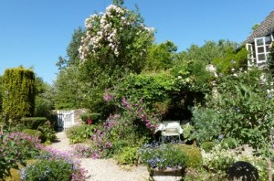The Gardens at the B&B near Malmesbury